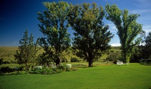 Farm (Bed & Breakfast) Grahamstown
