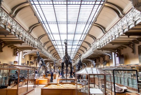 Muséum national d'histoire naturelle Paris